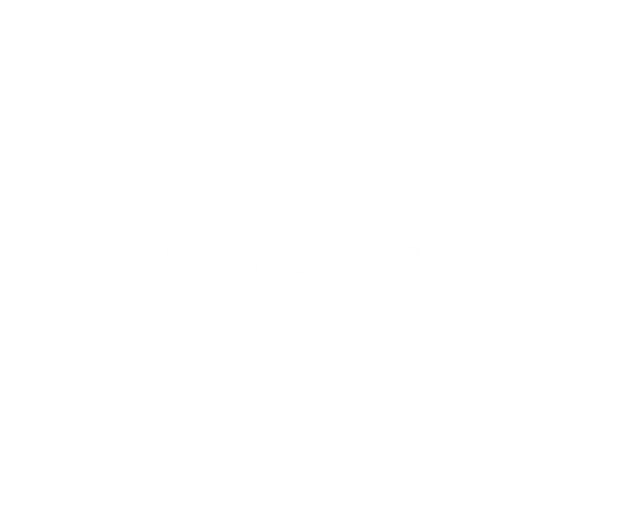 Website Design project for The Palisadian Post. Mobile, Responsive and Design work for a Print and Online News Publication with Subscription Services in Pacific Palisades, Ca.